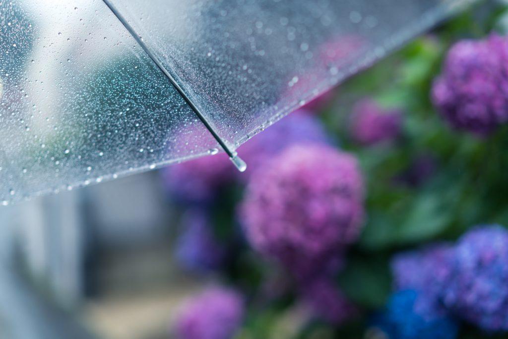 梅雨時期不調になるあなたへ